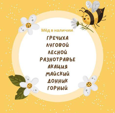 Катон Карагай мёд