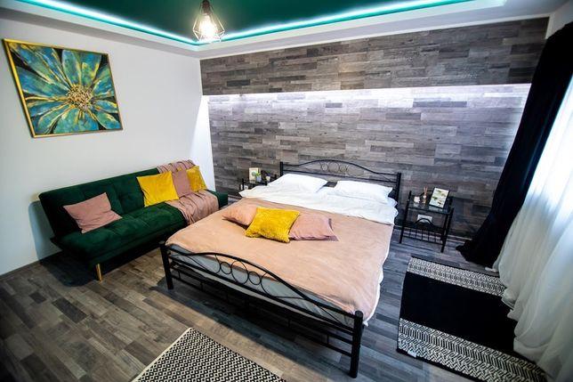 Cazare Regim Hotelier Apartament (1 camera) Cetate Parc