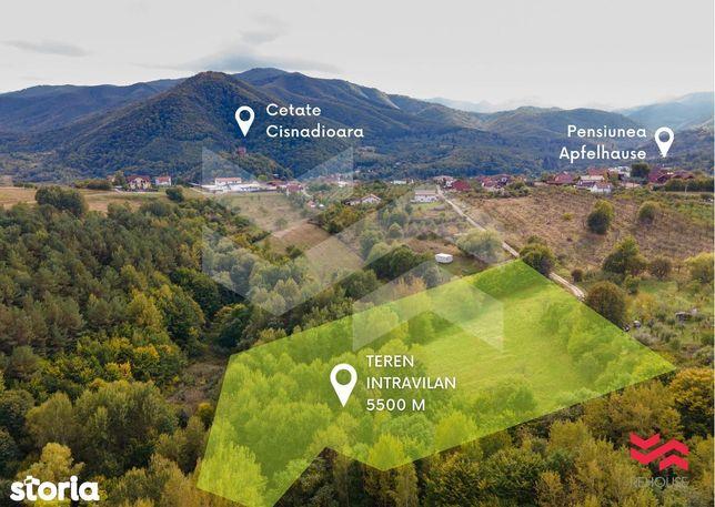 Teren de vanzare - 5500mp – Cisnadiaora- Zona Apfelhause