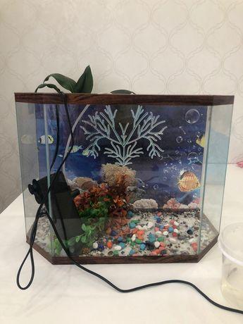 Продам аквариум...