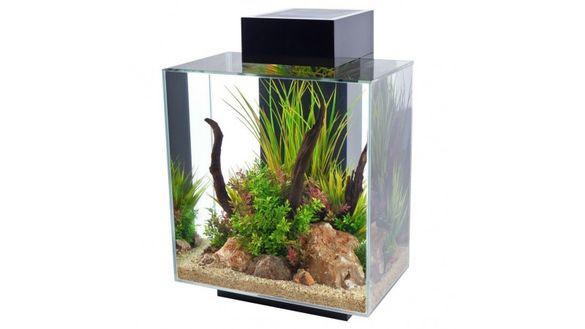 Hagen Fluval Edge Led Aquarium, 46 Litre, Black Gloss