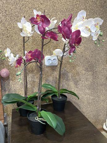 Продам ИНТЕРЬЕРНЫЕ орхидеи ИКЕА !