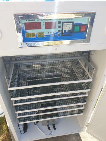 Incubator C3
