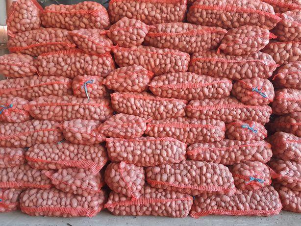 Cartofi de samanta Redlady