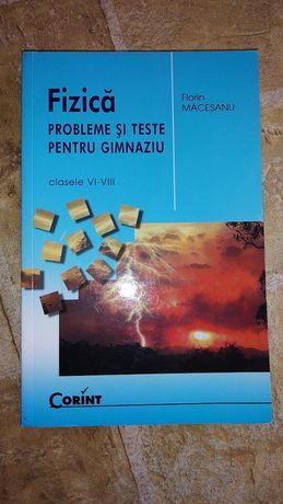 Fizica de Florin Maceseanu