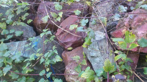 Цветни камъни подходящи за алпинеум