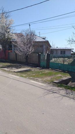 Casa sat Darasti Vlasca, comuna Adunatii Copaceni