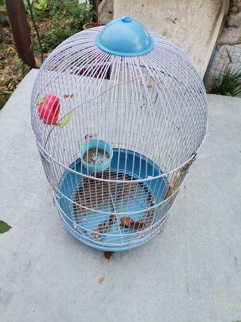 Cușcă papagali mare