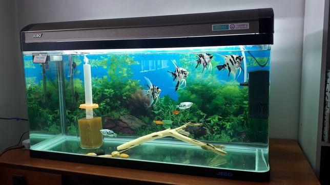 Продам аквариум 200 литров jebo