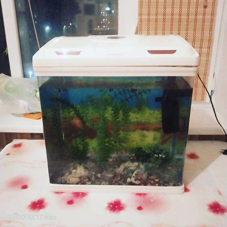 55л заводской аквариум с 30 рыбками и аксессуарами