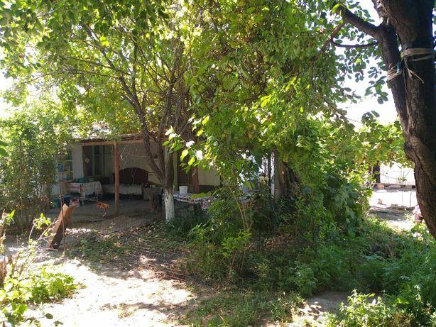 Продаю  дом город Шардара