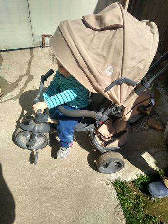 Tricicleta copii Modi Coccolle
