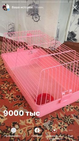 Продам клетку от кролика