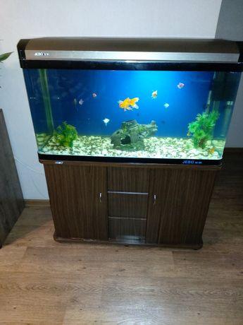 Аквариум с тумбой на 200 литров  полной комплект +с рыбками