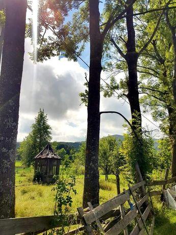De închiriat vila în sat Margau jud Cluj