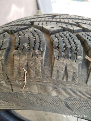Продам зимнюю шину. одна шт. 205 65 r15.торг.
