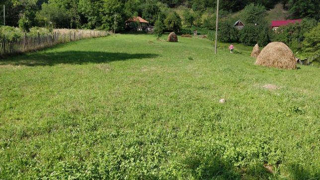 Vanzare teren Varlaam, judetul Buzau