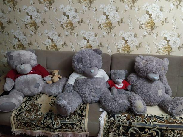Мишки Тедди срочно продаются