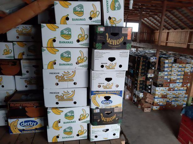 Baxuri banane noi și în stare bună.