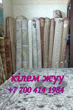 Химчистка ковров в Астане (Используем ковромоечные роторные машины)