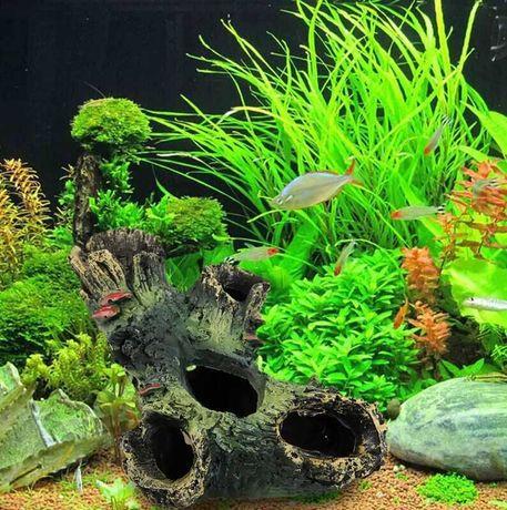 Срочно продам аквариум (все в комплекте)