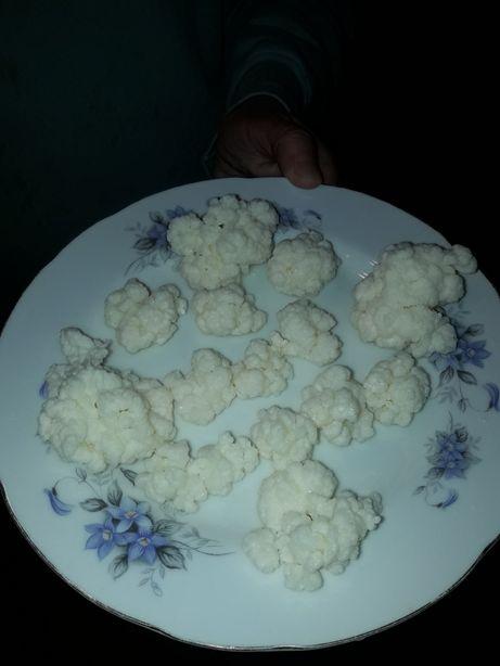Лечебный тибетский молочный гриб