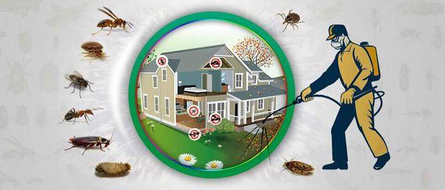 Дезинфекция дезинсекция тараканов, Уничтожение муравьев клопов ,Вирусо