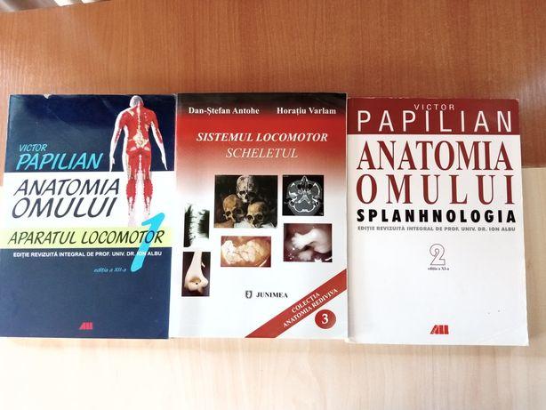 Anatomia omului de Victor Papilian și sistemul locomotor