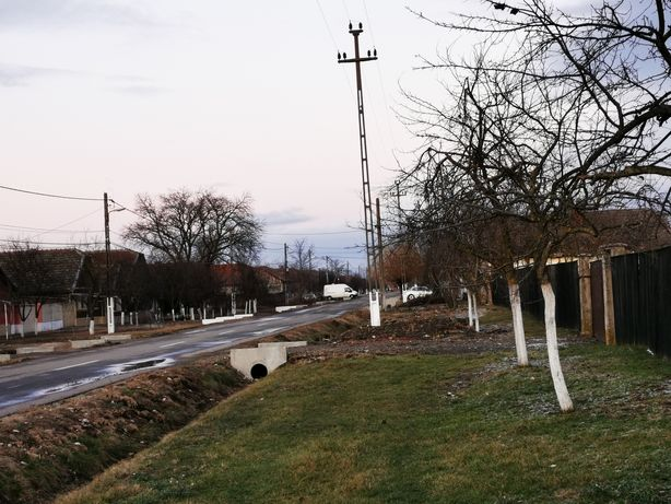 Teren intravilan/loc de casa Simand Arad 2225 mp