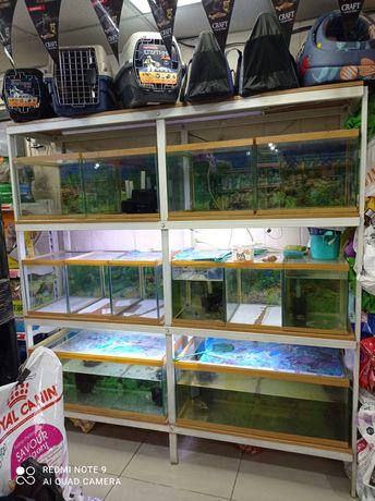 Полка с аквариумами