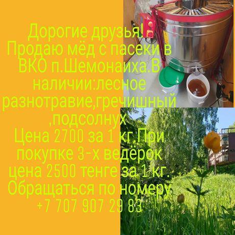 Продам мёд Восточно-Казахстанская область