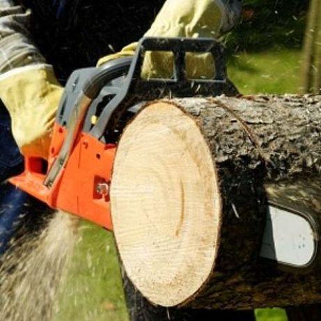Drujbar, taiat pomi ,copaci,crengi, lemne cu drujba
