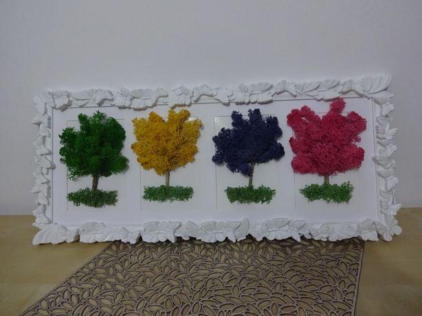Tablouri licheni si flori