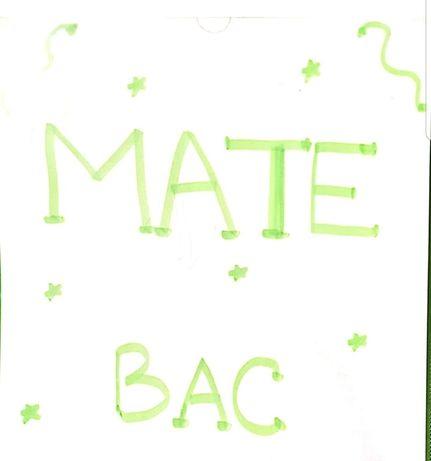 MATE M2 BAC Rezolvarea completa a subiectelor MEN 2011-2020
