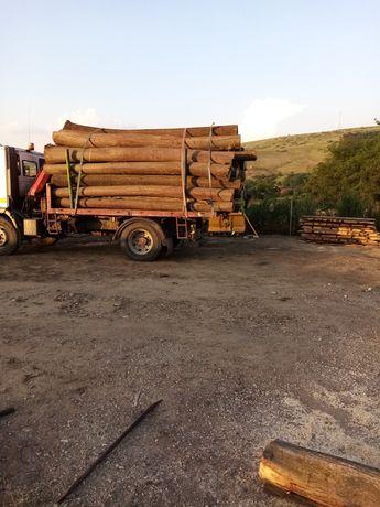 Tei lemn de foc sau buștean de lucru!