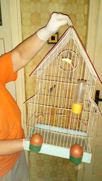 Клетка за Папагали,канарчета-всички принадлежности,дръжка за пренасяне