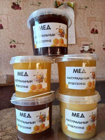 Продам свежий натуральный мёд