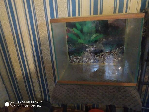 Продам аквариум на 24л