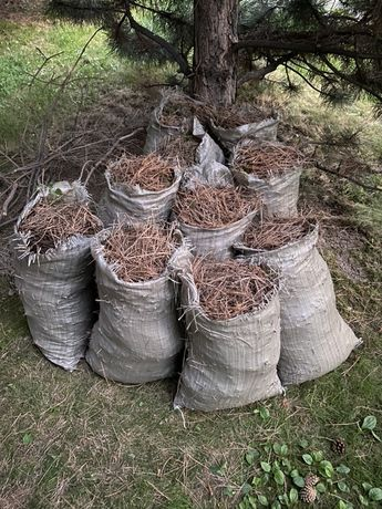 Сосновый опад удобрение