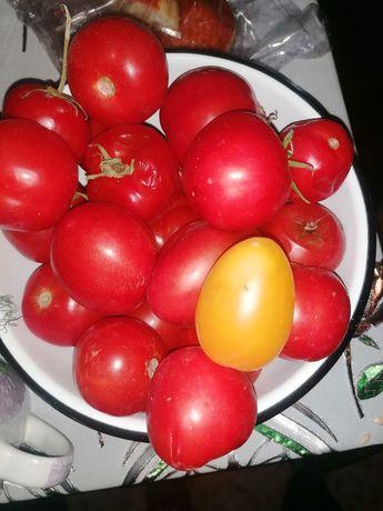 Продам помидоры и перец болгарский, с огорода