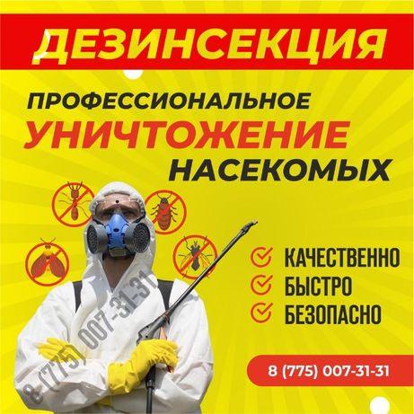 Уничтожение клопов, тараканов, муравьев, крыс мышей,! ДЕЗИНФЕКЦИЯ