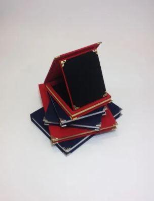 Cutie pluşată, cu suport plachetă din catifea