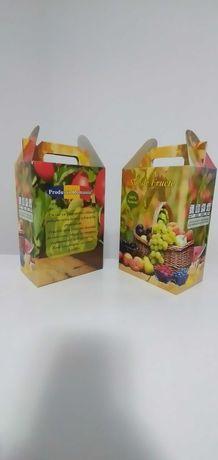 Cutie bag in box 3litri caserat