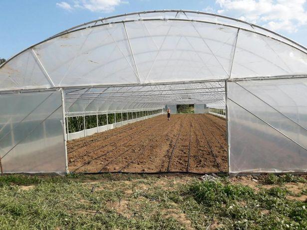 Solarii legume, confectii metalice