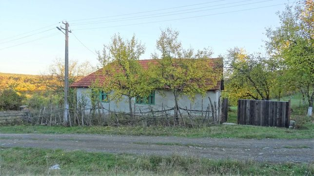Casă de vacanță în stil rustic cu peisaj idilic Bruznic