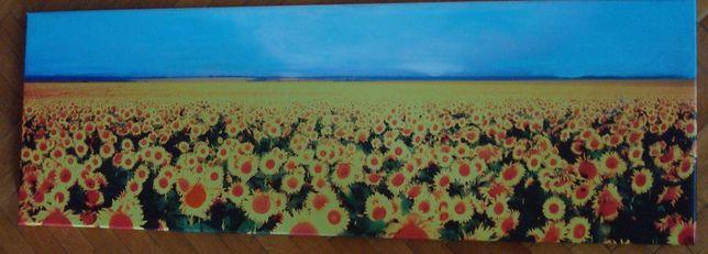 Superb Tablou Câmp cu floarea soarelui mare