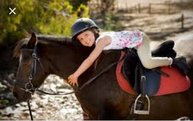 Прогулки на лошадях в Конно спортивном комплексе Восточный.