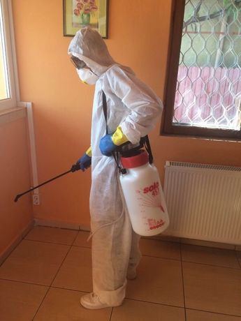 FIrma deratizare dezinfectie dezinsectie constanta