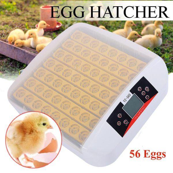 Автоматичен инкубатор за 56 яйца гр. Велико Търново - image 1