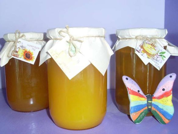 Продавам пчелен мед и прашец от района на с. Радишево,Плевенско.